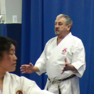 Shotokan Karate Workshop